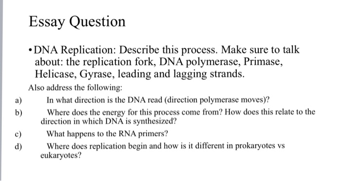 Compare And Contrast Essay Papers Essay Question Dna Replication Describe This Process Make Sure To Talk  About The Thesis Statement For Definition Essay also Thesis Statement Narrative Essay Solved Essay Question Dna Replication Describe This Proc  Sample Essay Thesis Statement