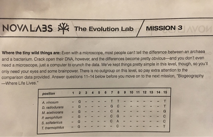 Solved: NOVA LABS The Evolution Lab / MISSION 3 Where The ...
