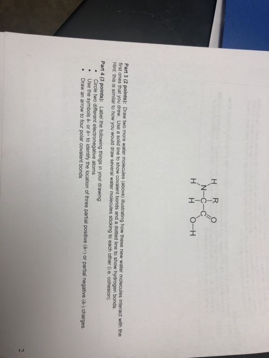Solved S S Nn E Water Molecules Above Llustrating How T