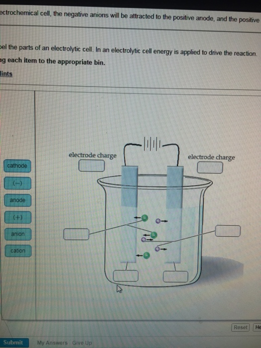 Solved Label The Parts Of An Electrolytic Cell In A Elec