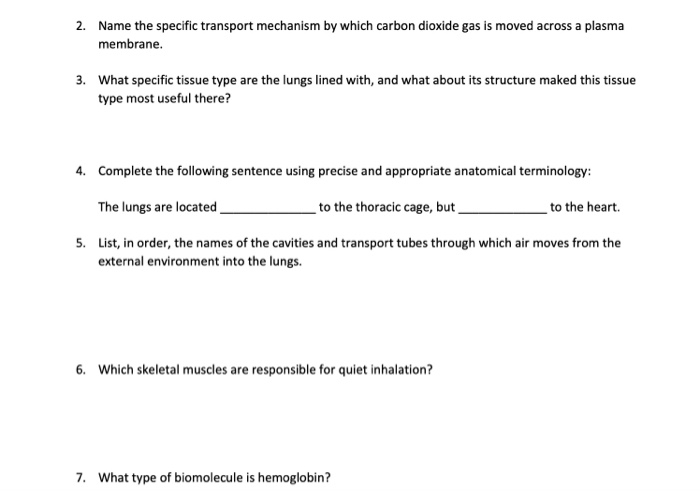 Solved: 2  Name The Specific Transport Mechanism By Which