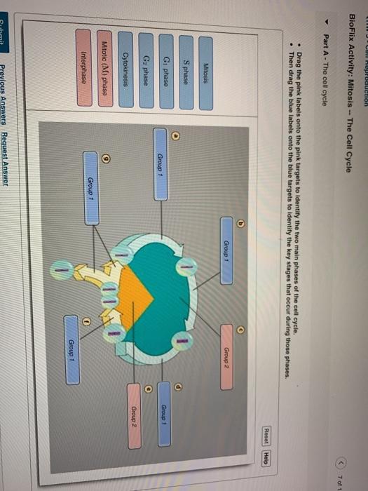 Download Water Cycle Diagram Quiz Full Hd Version Grafikerdergisi Chefscuisiniersain Fr