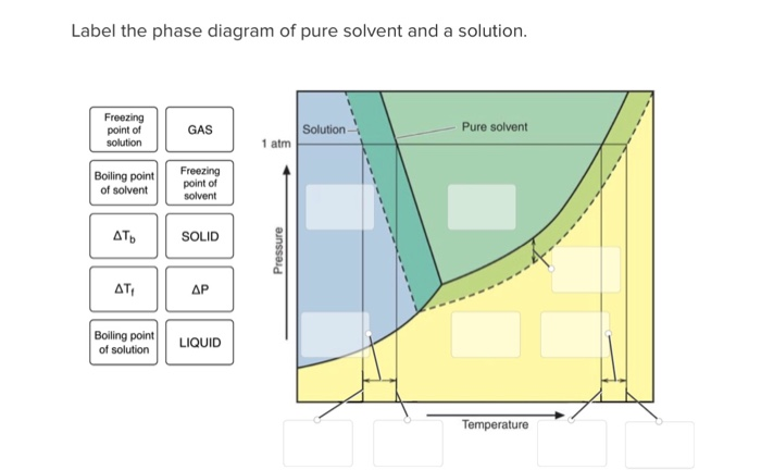 Solved  Label The Phase Diagram Of Pure Solvent And A Solu