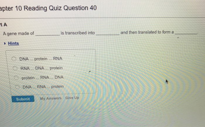 Solved: Pter 10 Reading Quiz Question 40 TA A Gene Made Of