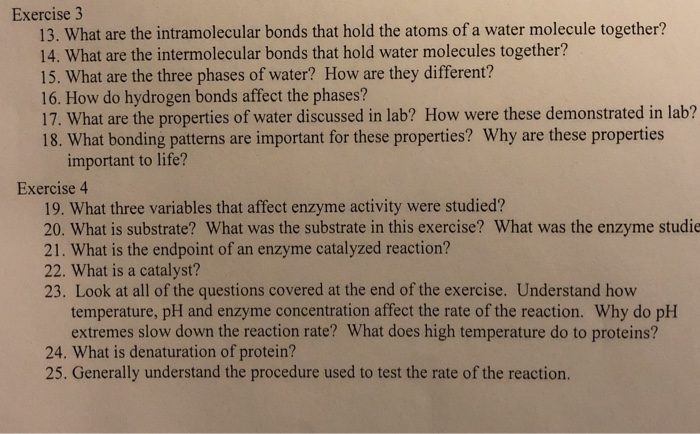 Exercise 3 13. What are the intramolecular bonds that hold the atoms of a water molecule together? 14. What are the intermole