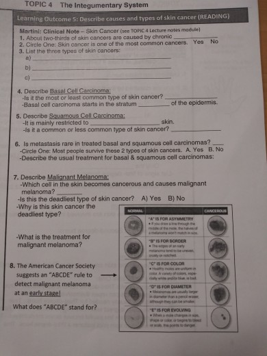 Solved Topic 4 The Integumentary System Learning Outcome Chegg Com