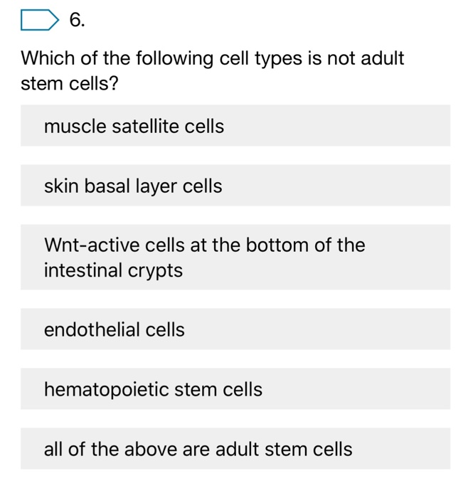 Solved Which Of The Following Cell Types Is Not Adult Ste
