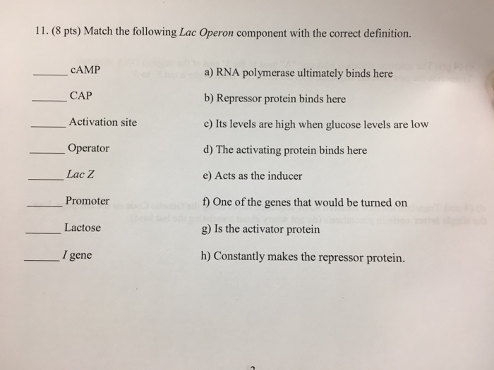 Solved: 11  (8 Pts) Match The Following Lac Operon Compone