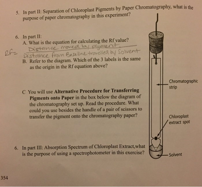 separation of sugars by paper chromatography Chemistry 11 santa monica college paper chromatography: separation and identification of five metal cations objectives known and unknown solutions of the metal ions ag+, fe3+, co2+, cu2+ and hg2+ will be analyzed.