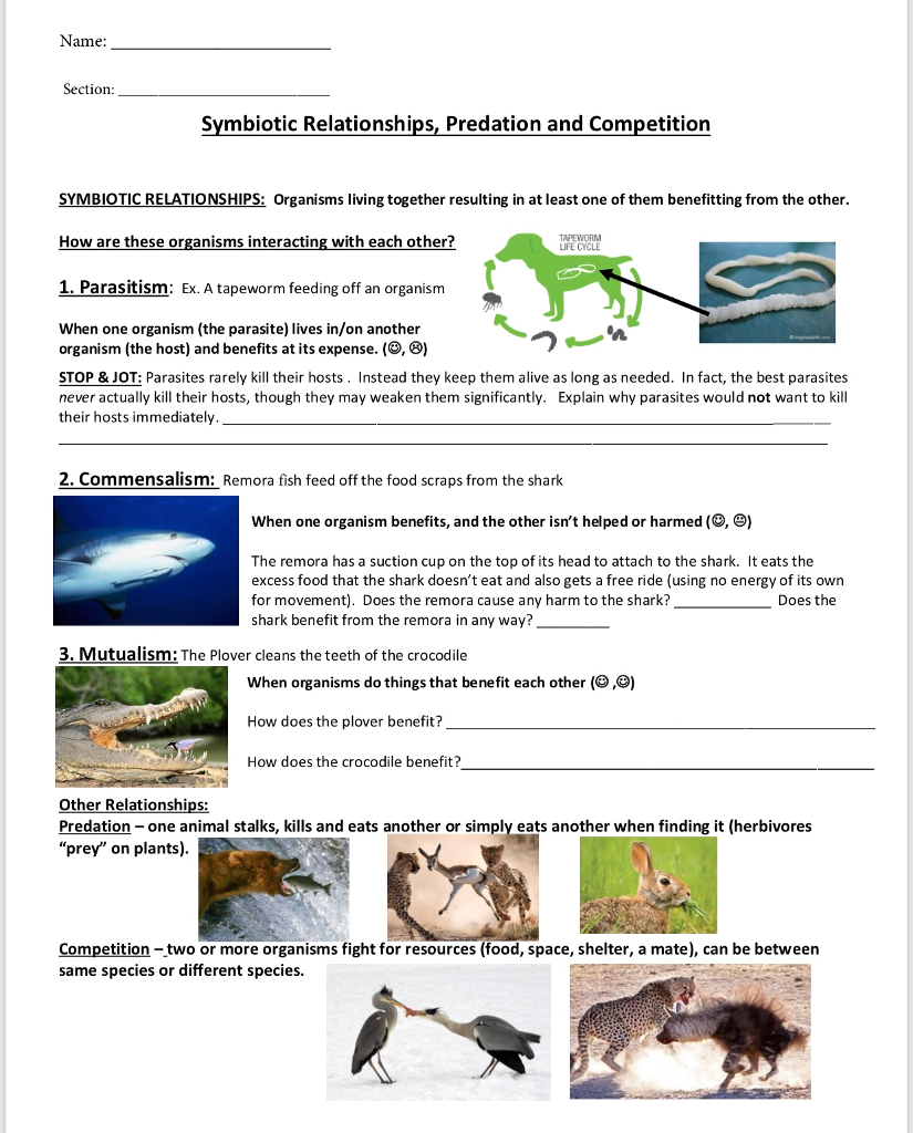 Solved: Name: Section: Symbiotic Relationships, Predation ...