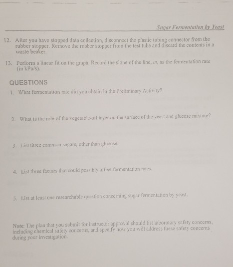 factors affecting fermentation rate