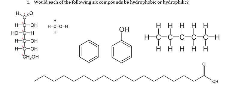 1. Would each of the following six compounds be hydrophobic or hydrophilic? Н-С-ОН но-с-н Н-С-О-Н он н-с-с-с-с-с-н нгон он