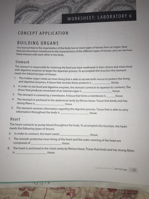 Solved Worksheet Laboratory 6 Concept Application Buildi