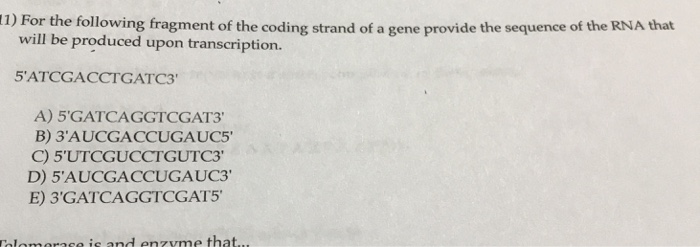 11) For the following fragment of the coding strand of a gene provide t will be produced upon transcription. A) 5GATCAGGTCGA
