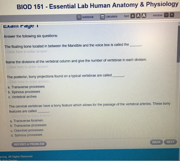 Solved: BIOD 151 - Essential Lab Human Anatomy & Physiolog ...