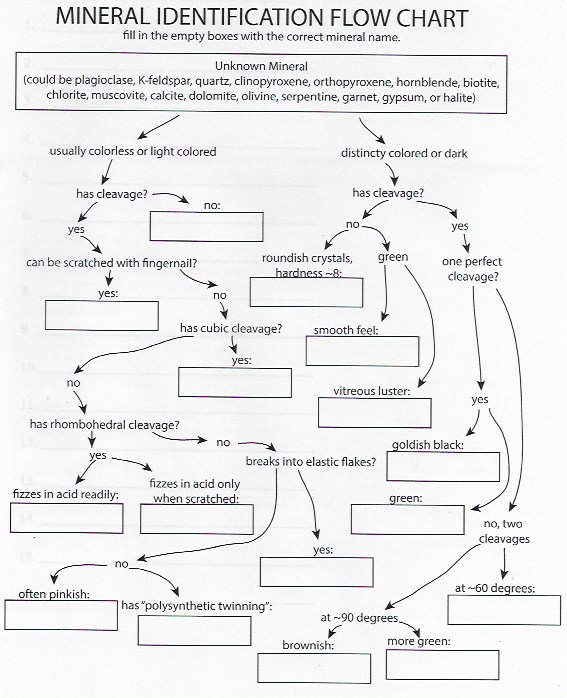 Microbiology Mania: Discovered : The Great Unknown! {Lab ... |Flow Chart Identifying Powders