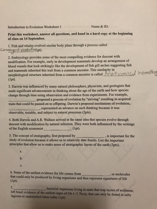 introduction to evolution worksheet 1 name id print this worksheet answer all questions - Evidence Of Evolution Worksheet Answers