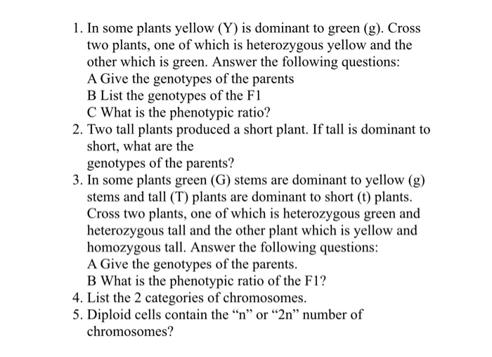 Solved: 1  In Some Plants Yellow (Y) Is Dominant To Green