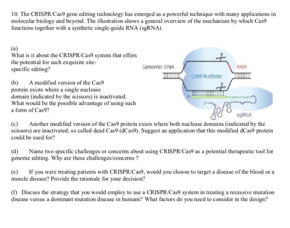 Solved: 10  The CRISPR/Cas9 Gene Editing Technology Has Em