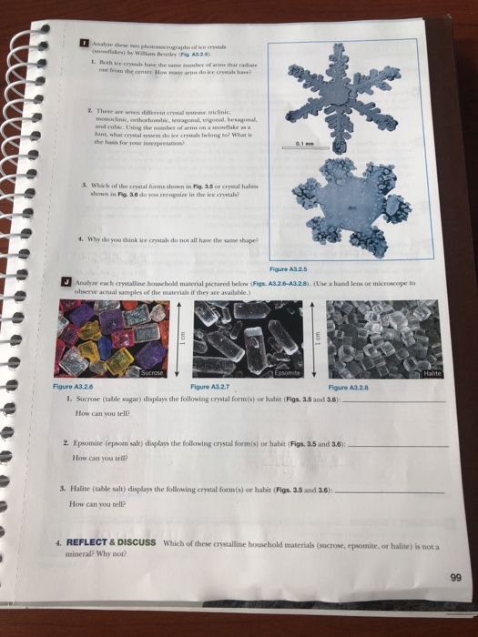 Solved: Analyae These Two Photomicrographs Ofice Crsias (s