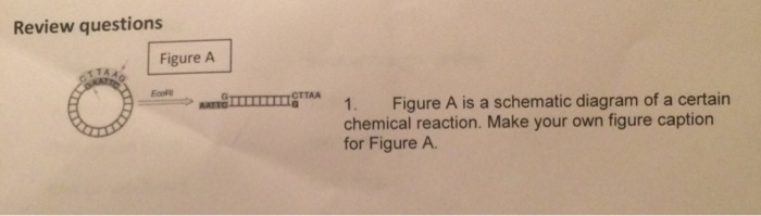 Solved: Figure A Is A Schematic Diagram Of A Certain Chemi ...