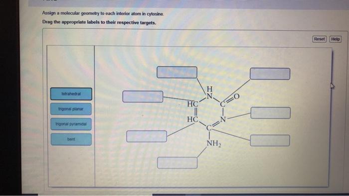 Solved Assign A Molecular Geometry To Each Interior Atom