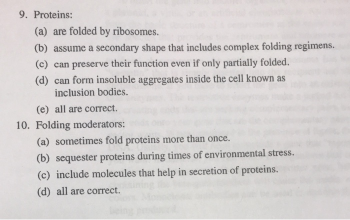 ribosomes and inclusion bodies