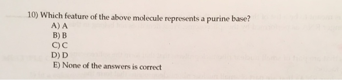 10) Which feature of the above molecule represents a purine base? A) A в) в C) C D) D E) None of the answers is correct