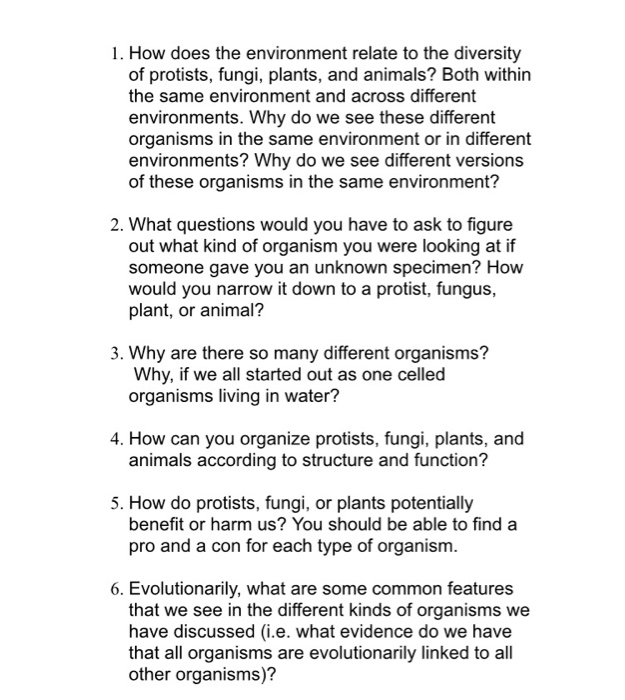What Does Environment Have To Do With >> Solved 1 How Does The Environment Relate To The Diversit