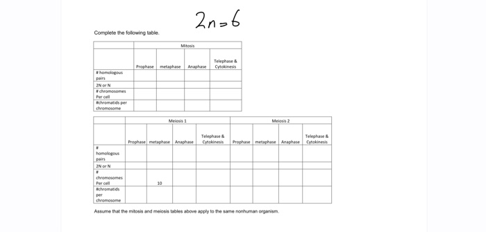Mitosis Vs Meiosis Table