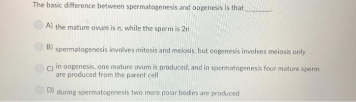 mature ovum
