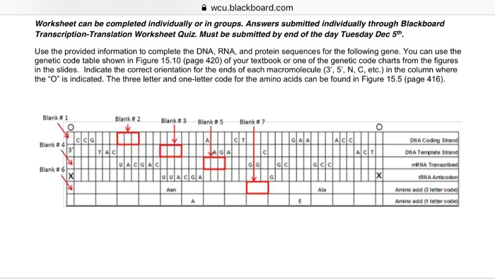 Gene Expression Lesson Plans   Worksheets   Lesson Pla as well Gene Expression   SAS additionally Bottom Ge ics Worksheet Awesome Seanah S Biology Blog moreover Solved  Student Worksheet Activity 5 4 1  Synthesis Of A P as well Solved  을 Wcu blackboard   Worksheet Can Be  pleted I likewise Living Environment Regents Review Worksheet   Homestylesite co additionally AP Biology C bell 8th Edition Chapter 1 Study Guide together with  additionally Ge ic Code Worksheet   Checks Worksheet moreover Sickle Cell Anemia Worksheet Answers The best worksheets image furthermore Be ing human doentary review essays also worksheet   Part 313 additionally Solved  Student Worksheet Activity 5 4 1  Synthesis Of A P likewise DNA Structure  Function    History CLOZE Cooperative Worksheet additionally Dominant and Recessive Genes   Worksheet   Education further Ge ic Manition  Definition  Pros   Cons   Video   Lesson. on ing your genetic code worksheet
