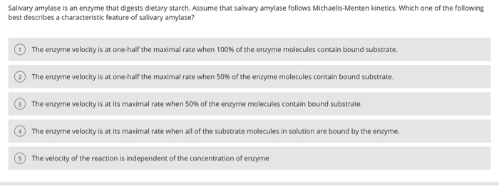 what does amylase digest