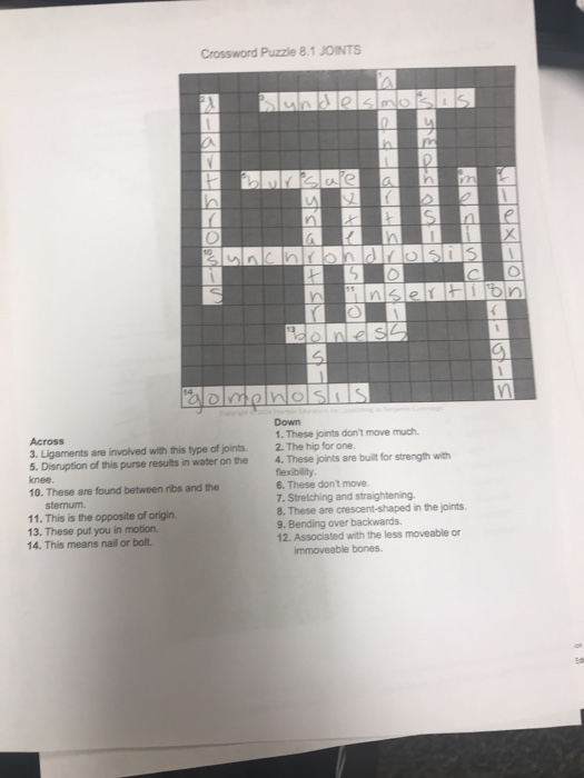 Solved Crossword Puzzle 81 Joints Down 1 These Joints D