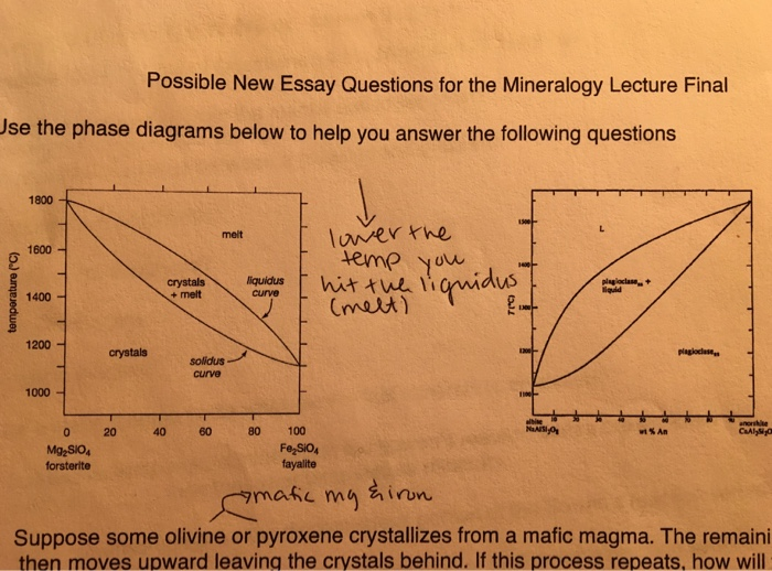 Solved Lecture Fimall Possible New Essay Questions For Th