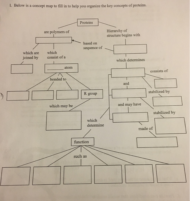 Solved: Below Is A Concept Map To Fill In To Help You Orga ...