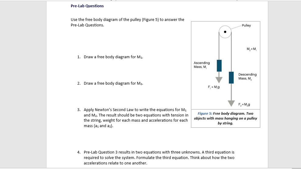 Free Body Diagram Questions