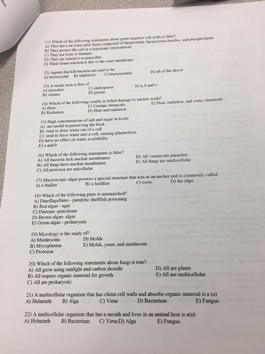 media%2F6ab%2F6abfb989-582e-4fe1-b4cd-06fd7ead5e51%2Fimage Virus Worksheet Answer Key on super teacher worksheets answer key, nervous system worksheets answer key, virus coloring worksheet, virus and bacteria worksheet key, biology corner worksheets answer key,