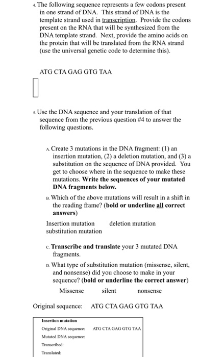 dna to protein worksheet how to write a proposal essay paper essay  dna to protein worksheet your week 3 worksheet instructions write a s chegg com