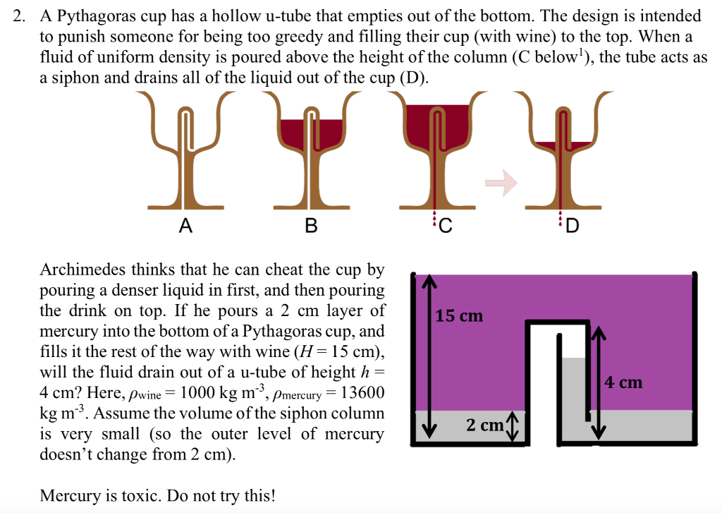 A Pythagoras Cup Has A Hollow U Tube That Empties Out Of The