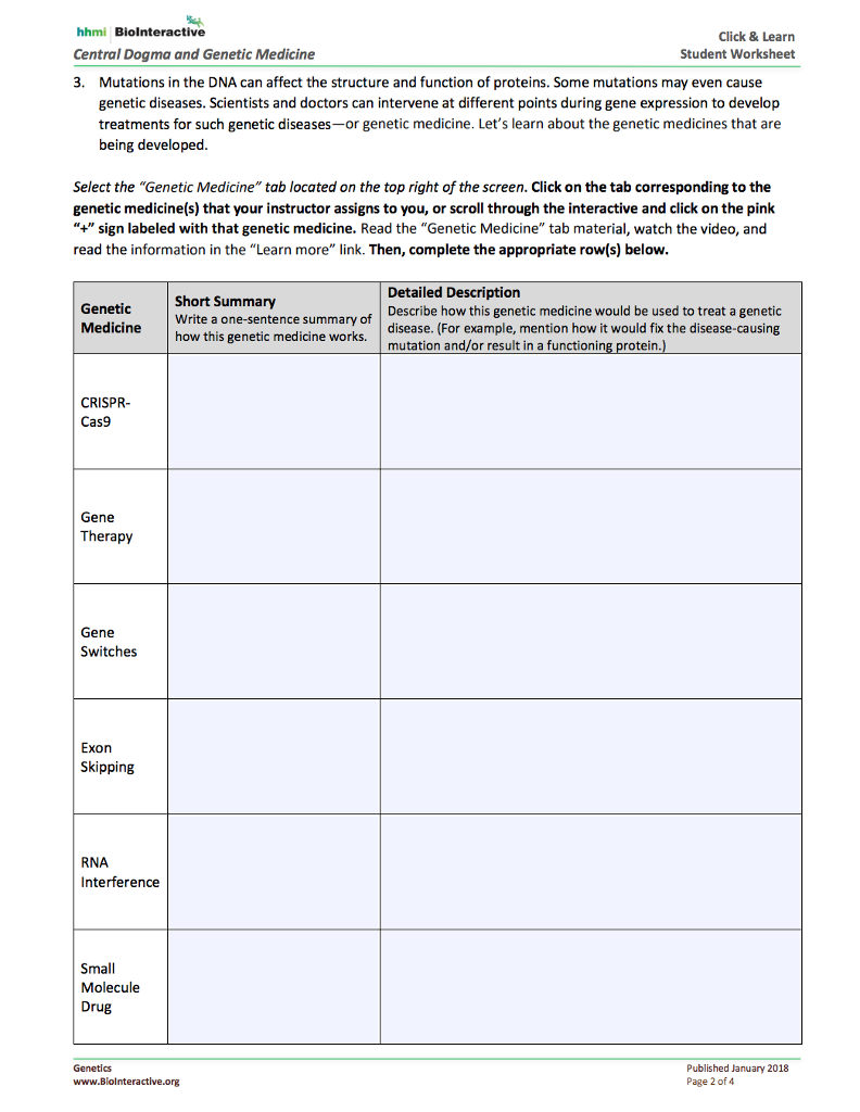 Dna And Genes Worksheet Answers
