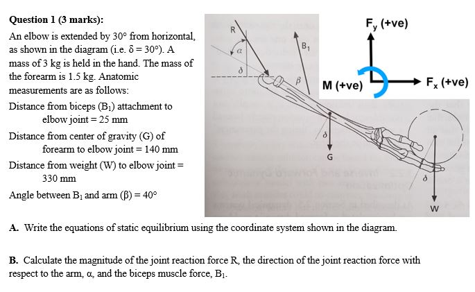 question 1 (3 marks) an elbow is extended by 30° from horizontal,