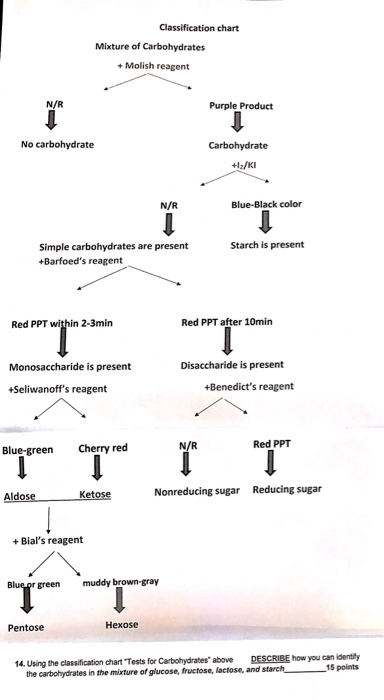Solved using the classification chart tests for carbohyd
