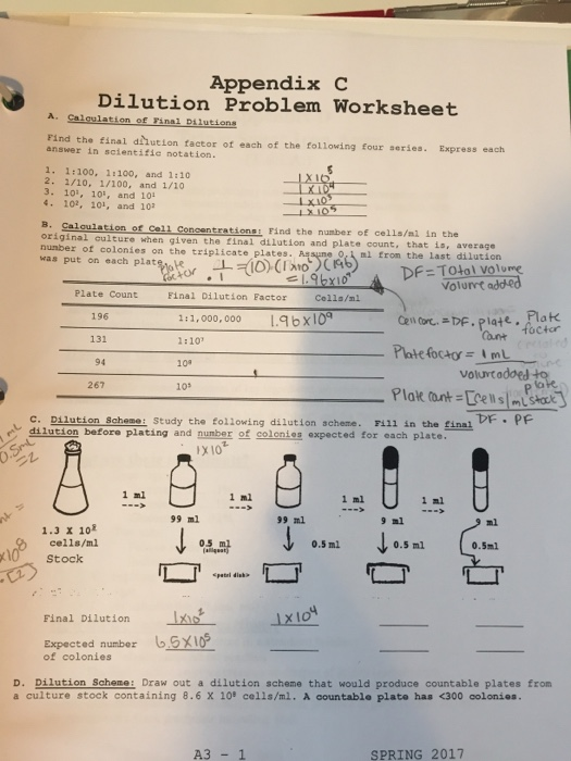 Solved Calculation Of Final Dilutions Find The Final Dil
