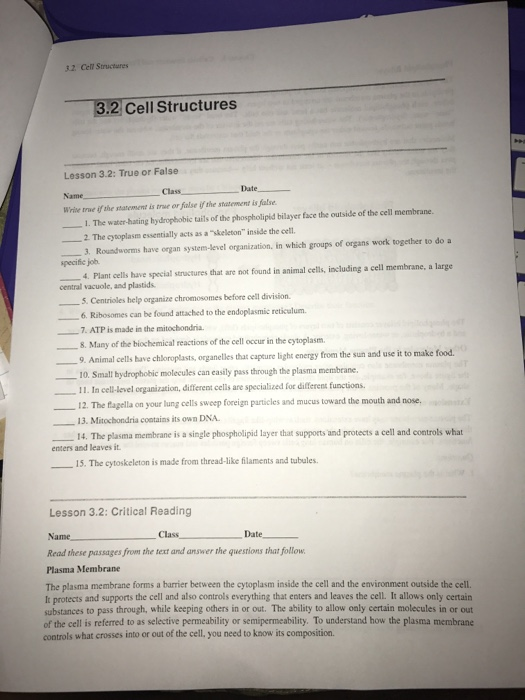 solved 32 cell structures 2 cell structures lesson 3 2 t