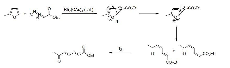 Rh2OAc)4 (cat.) coEt OEt CO2Et