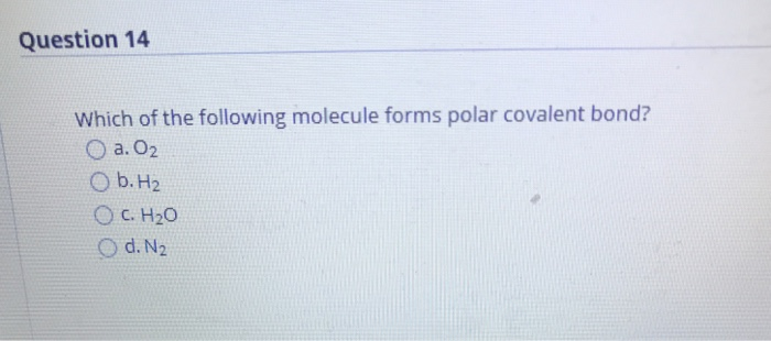 Solved Question 14 Which Of The Following Molecule Forms Chegg Com