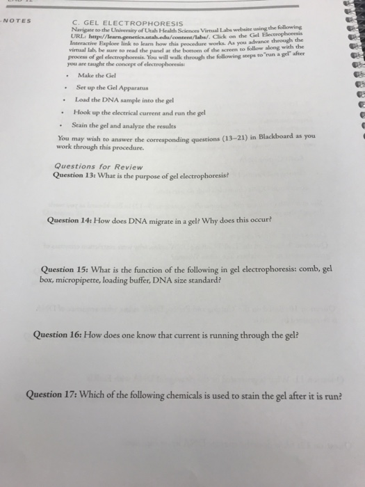 Solved: BIOTECHNOLOG Question 7s What Is The Role Of The T
