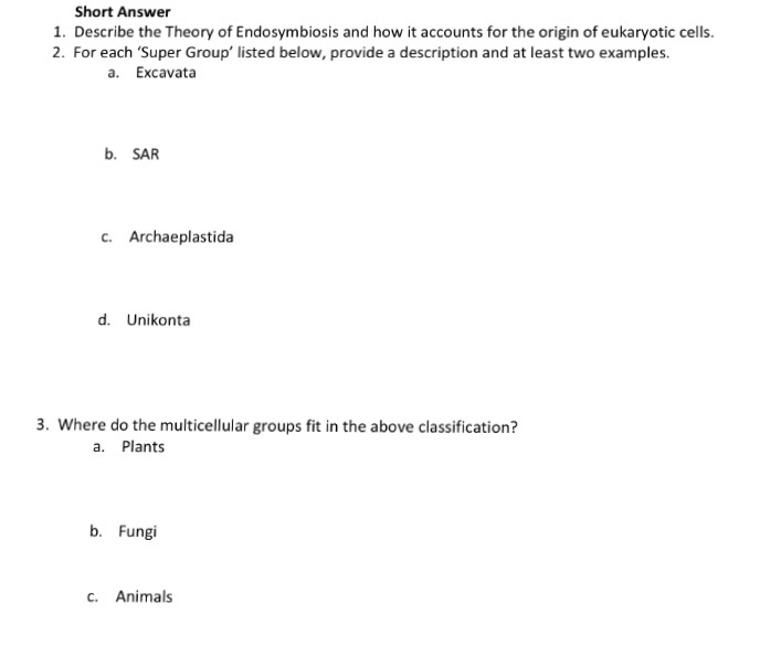 Solved 1 The Protists Are A Diverse Group Of Organisms T
