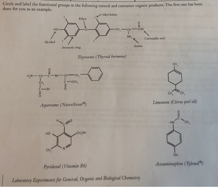 Solved Cirele And Label The Functional Groups In The Foll Chegg Com